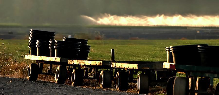Nursery Wagons Photograph