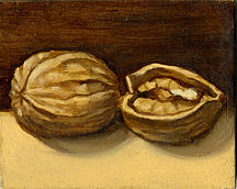 Still Life Painting - Nuts by Kristine Mobley