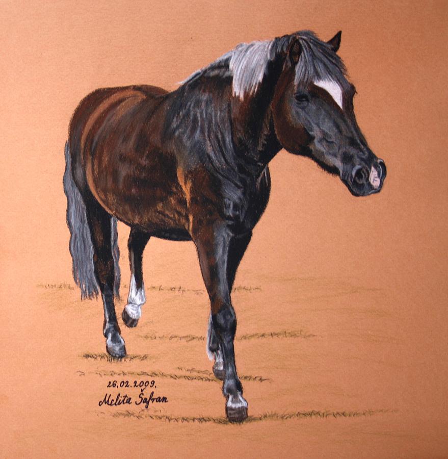 Horse Pastel - Nyx by Melita Safran
