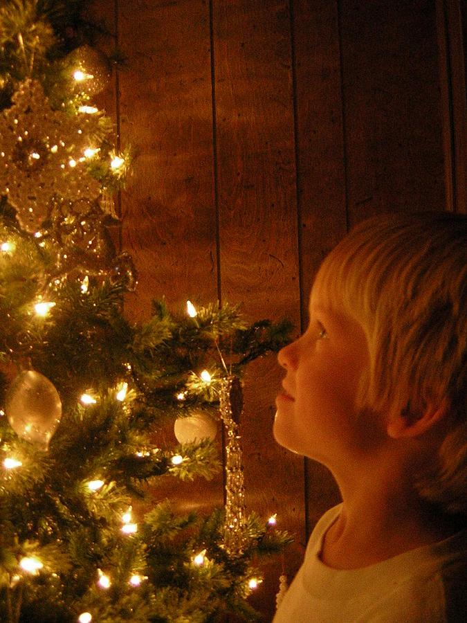 Christmas Photograph - O Christmas Tree by Deena Keller