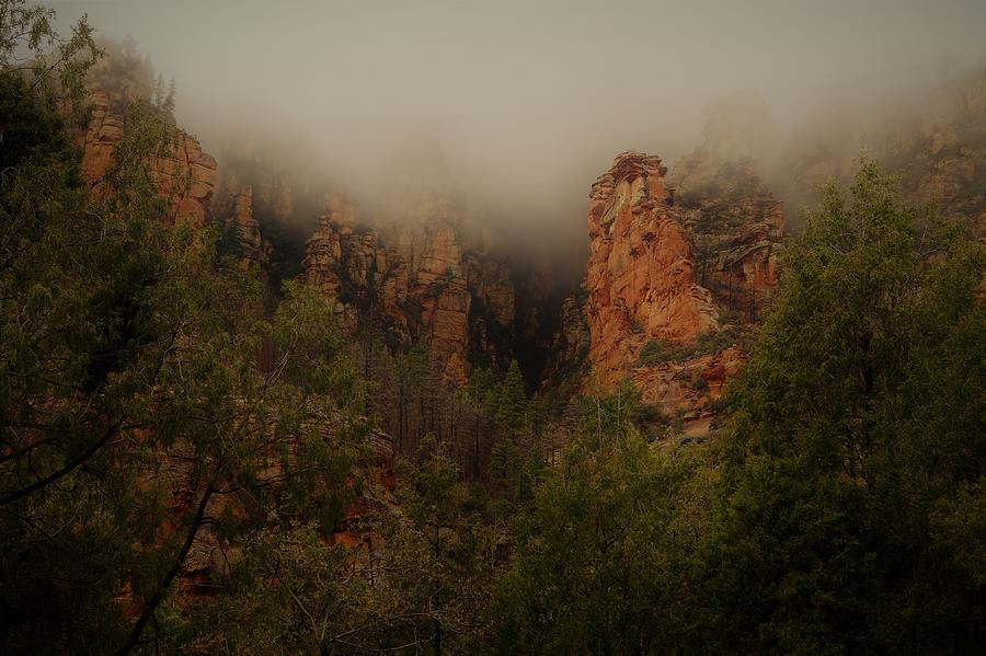 Oak Creek Canyon Arizona by Broderick Delaney