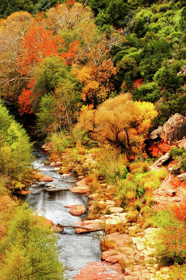 Oak Creek Canyon by Howard Bagley