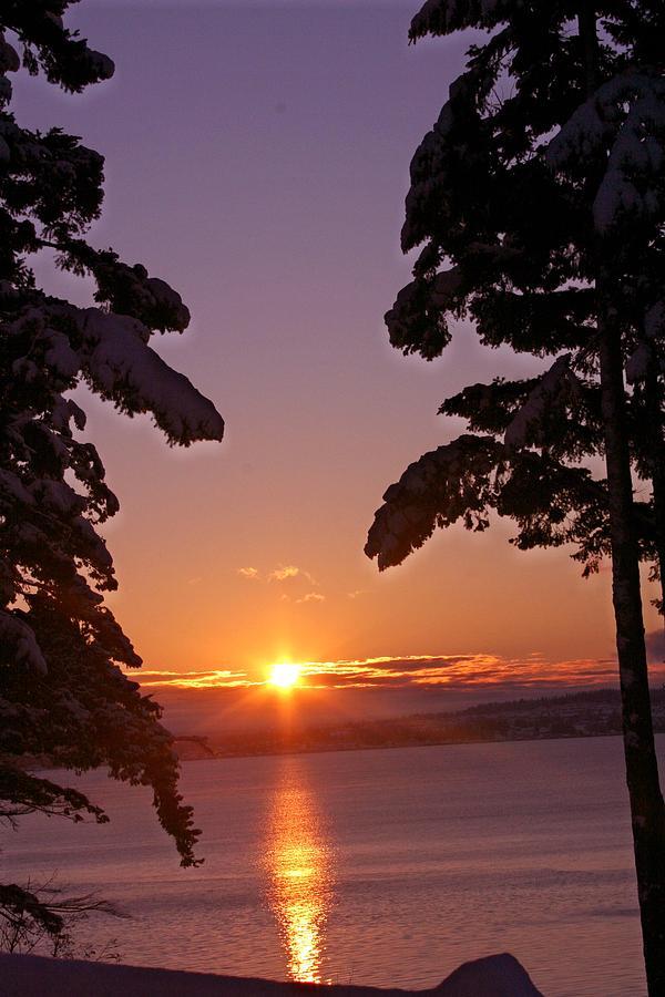 Sunrise Photograph - Oak Harbor Sunrise II Sr 2002 by Mary Gaines