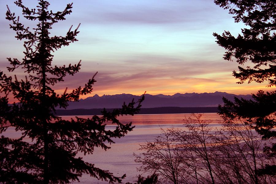 Sunset Photograph - Oak Harbor Sunset 1016 by Mary Gaines