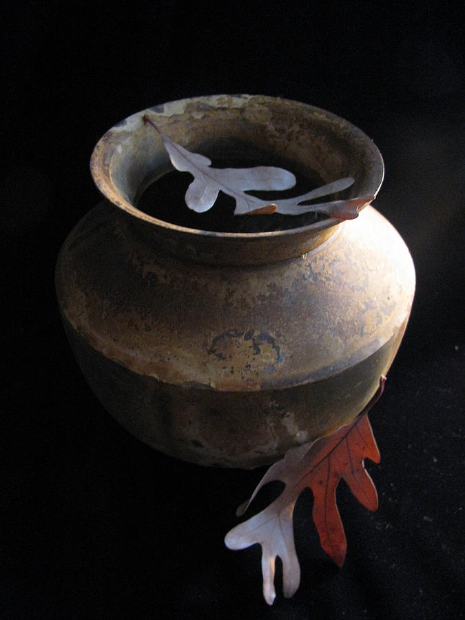 Nature Photograph - Oak Leaves And Urn by Lindie Racz