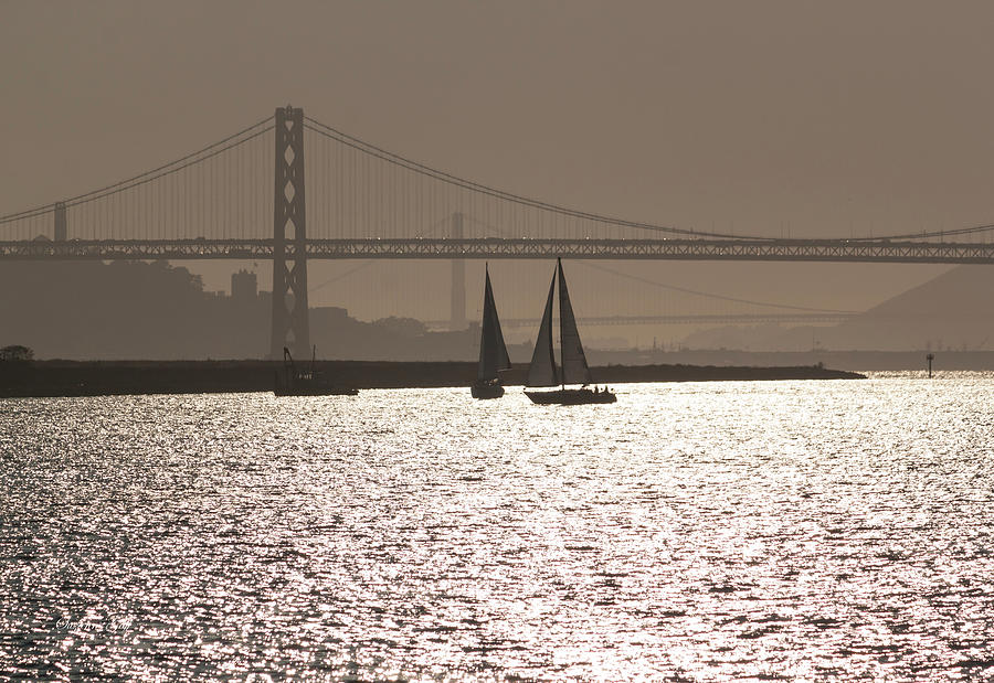 Oakland Bay Bridge III by Suzanne Gaff