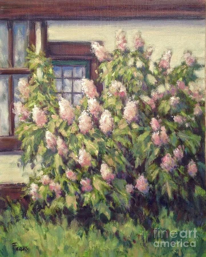 Oakleaf Hydrangea by Vickie Fears