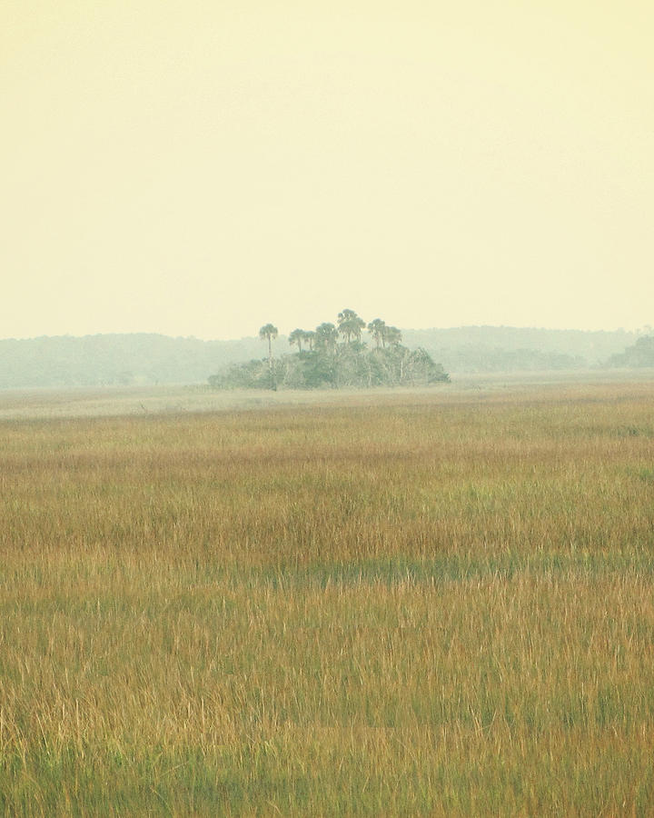 Landscape Photography Photograph - Oasis by Amy Tyler