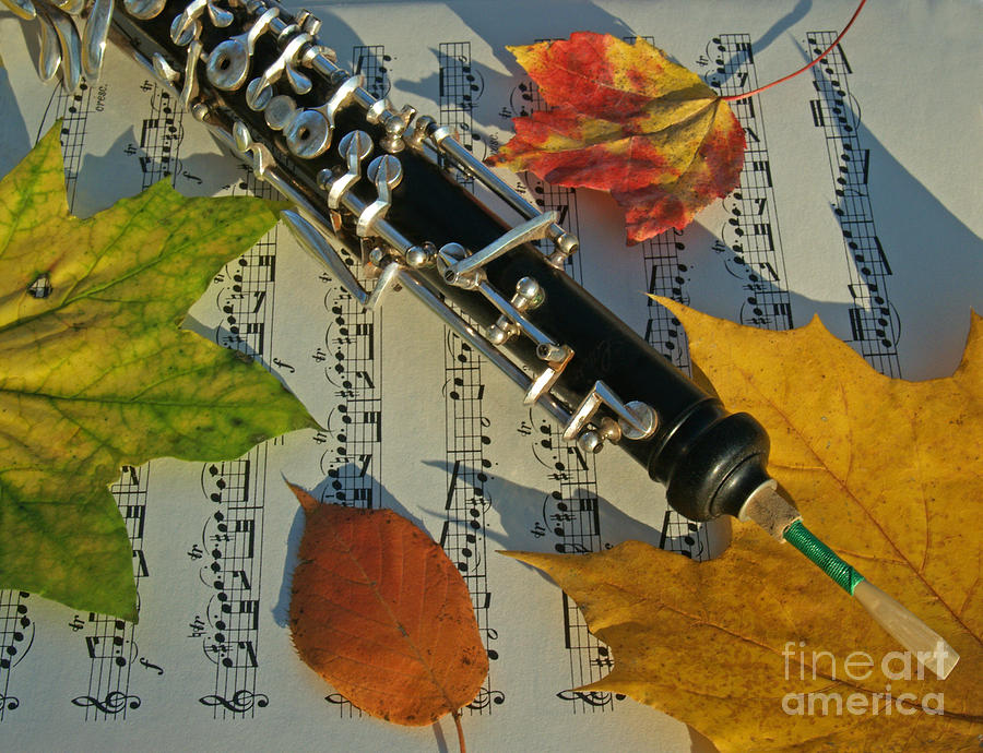 Oboe Photograph - Oboe And Sheet Music On Autumn Afternoon by Anna Lisa Yoder