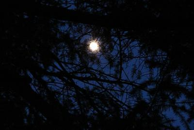 Obscure Photograph - Obscure Moon by Peggy Acklin