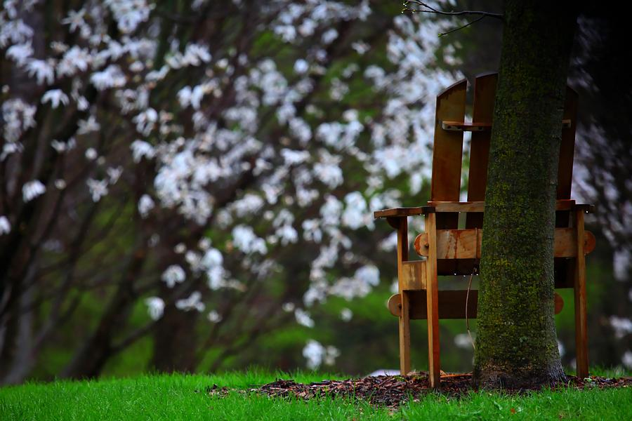 Chair Photograph - Observation Chair by David Christiansen
