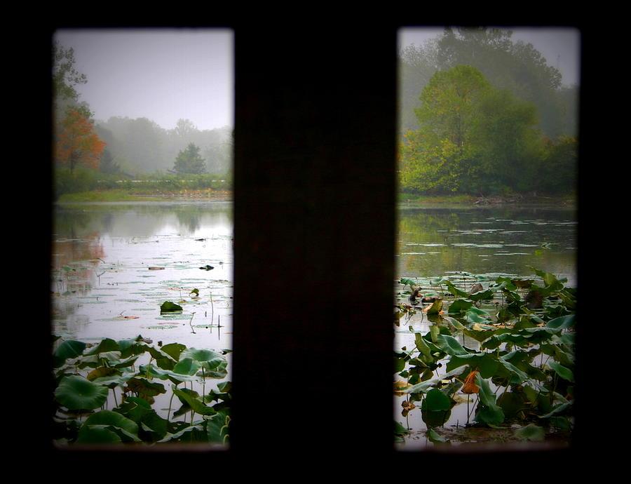Misty Photograph - Observation Deck On A Misty Lake  by Karen King