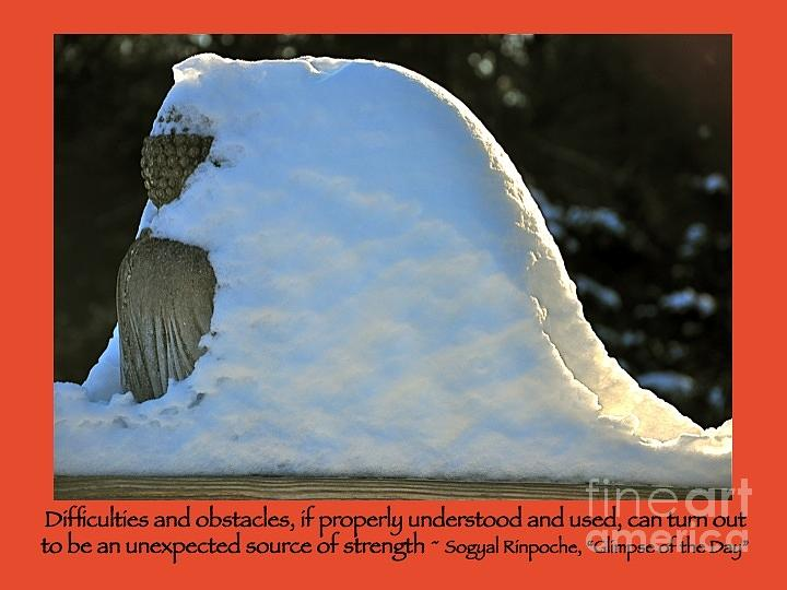 Buddha Photograph - Obstacles by Laurie DeVault