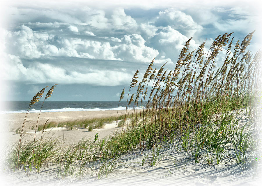 Ocean Breeze at Fort Fisher - number one by Paul Schreiber