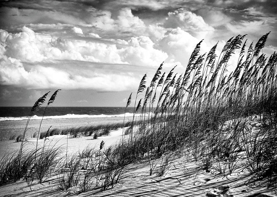 Ocean Breeze at Fort Fisher - number two by Paul Schreiber