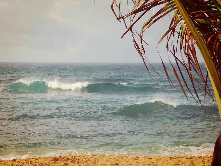 Beach Photograph - Ocean Breeze  by JAMART Photography