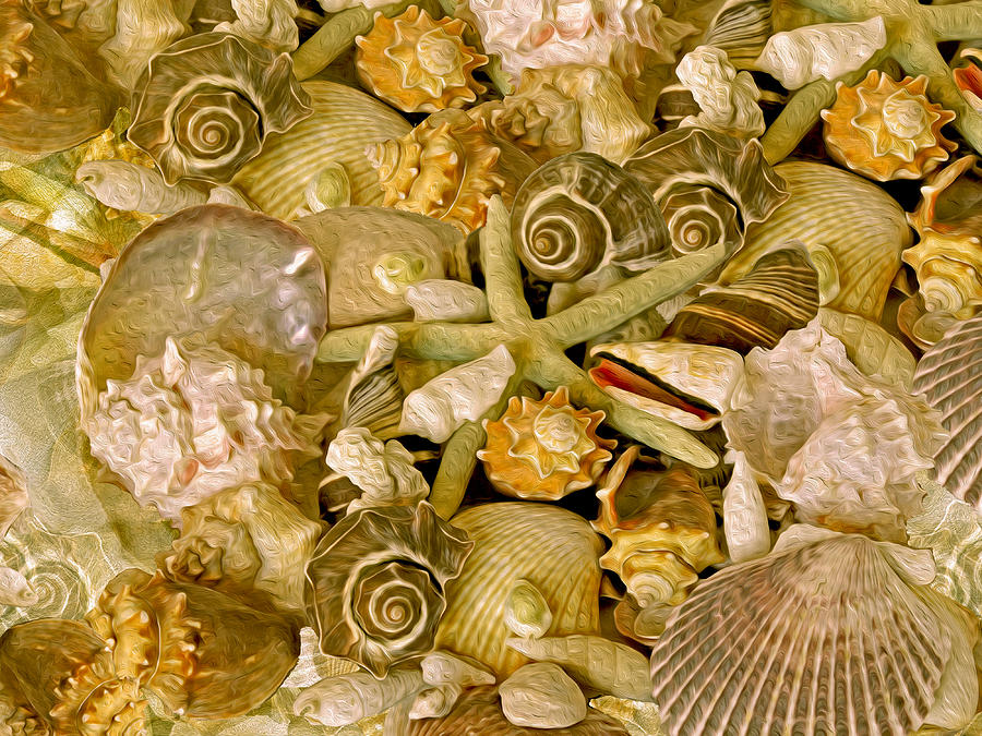 Ocean Gems 13  by Lynda Lehmann