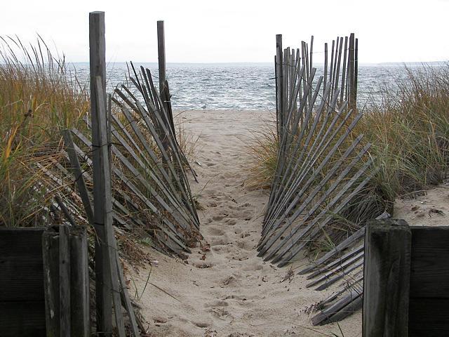 Sea Grass Photograph - Ocean Invite by Jess Kielman