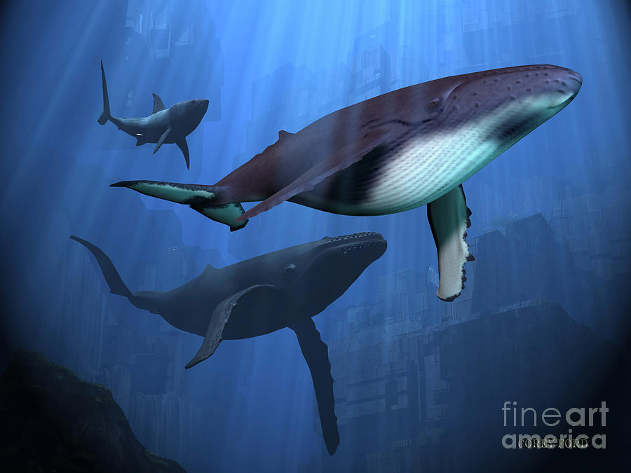 Whale Painting - Ocean Ruins by Corey Ford