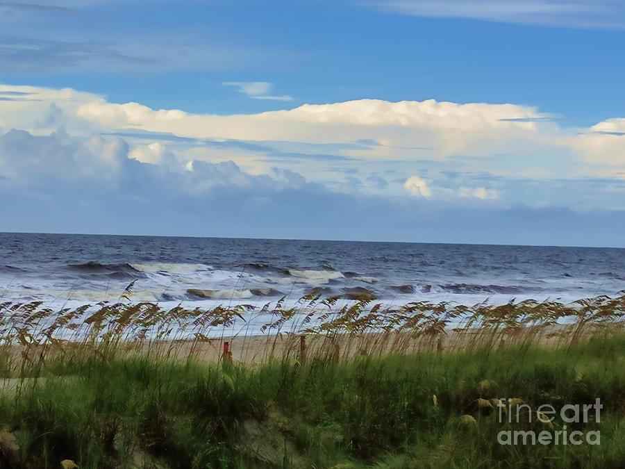 Ocean, Sky, Sea Oats by Roberta Byram