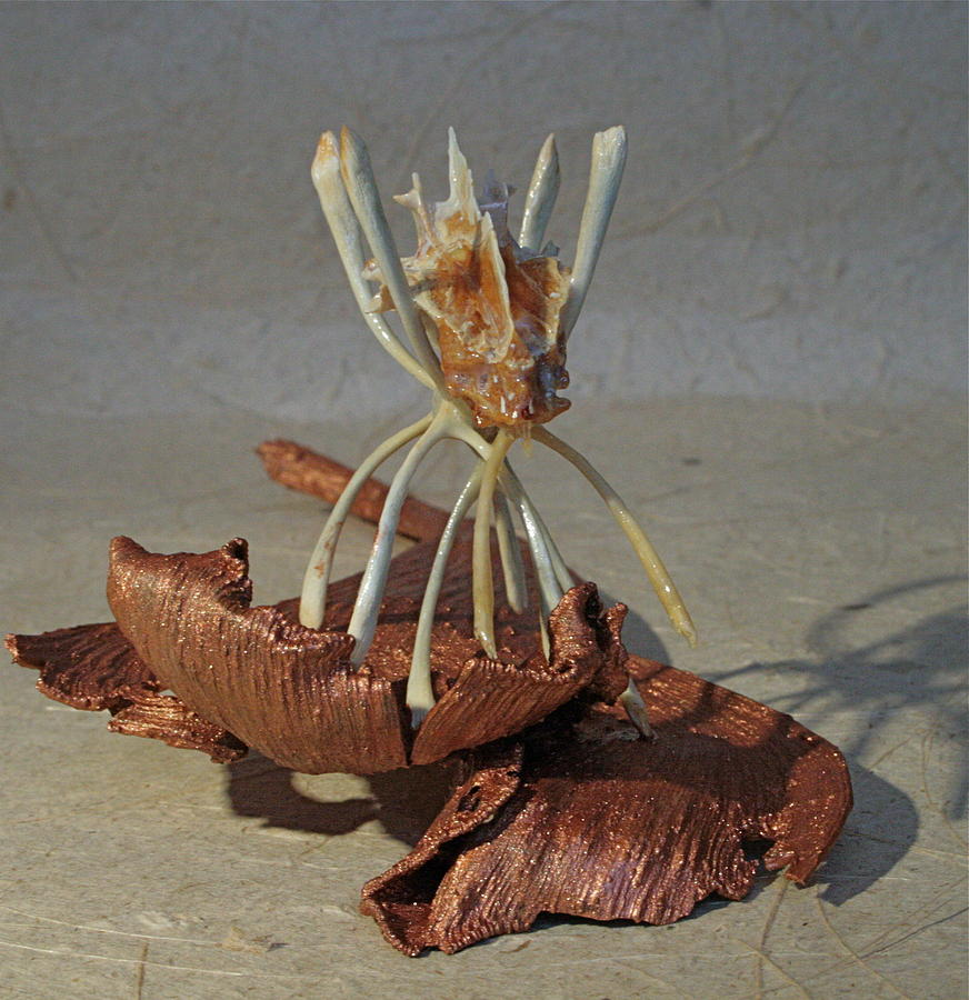 Sculpture Sculpture - Ocean Spider by Ruth Edward Anderson