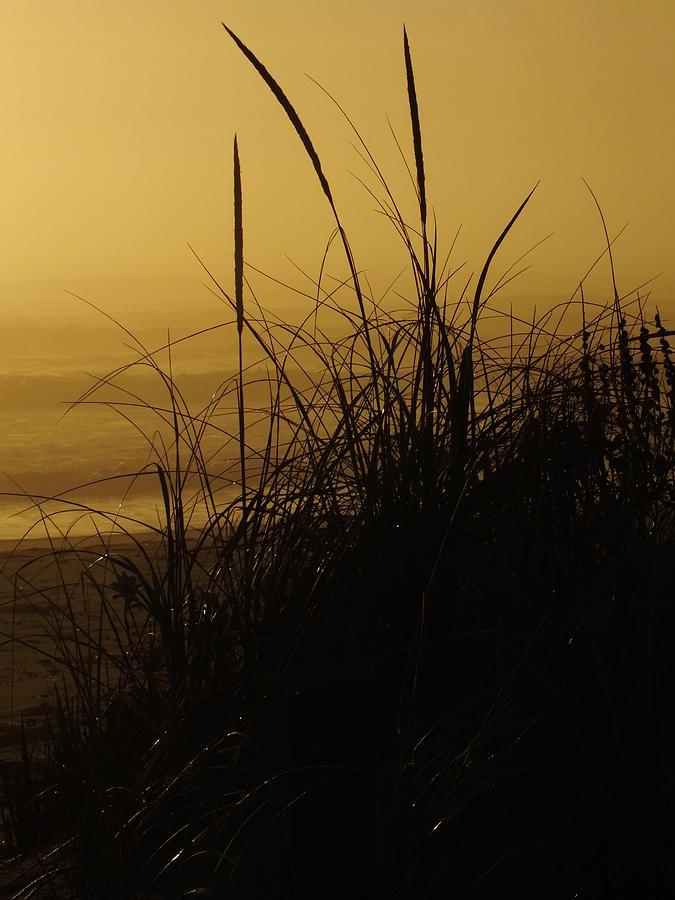 Morning Fog Outer Banks Ocean Sunrise Photograph