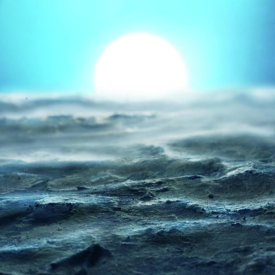 Ocean Sunrise by Stephen Dorsett