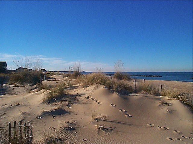 Beach Photograph - Ocean View Beach by Marina Owens