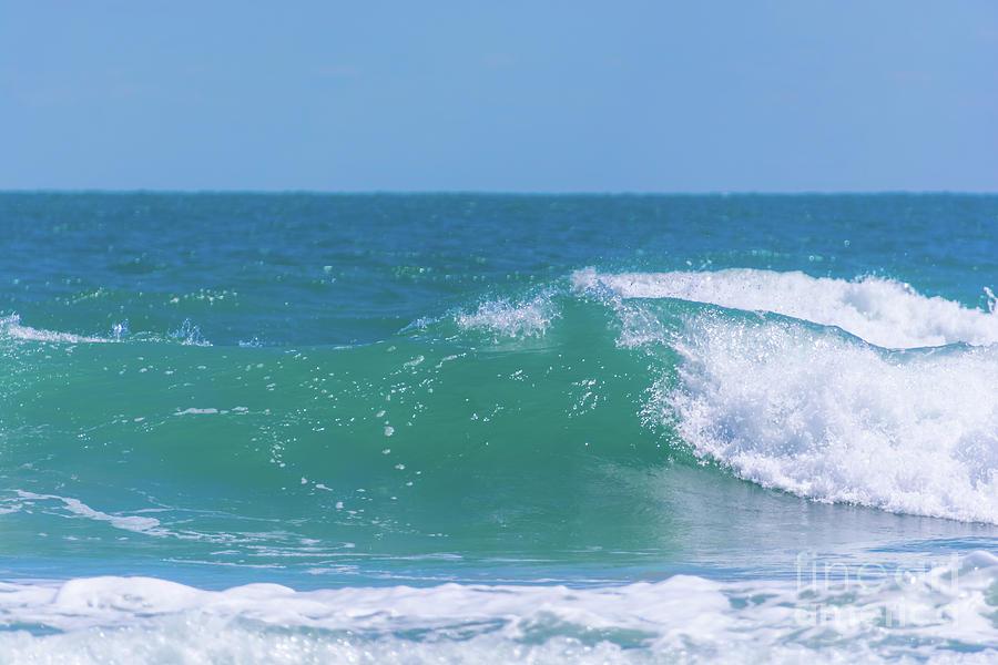 Ocean Wave by Pamela Williams