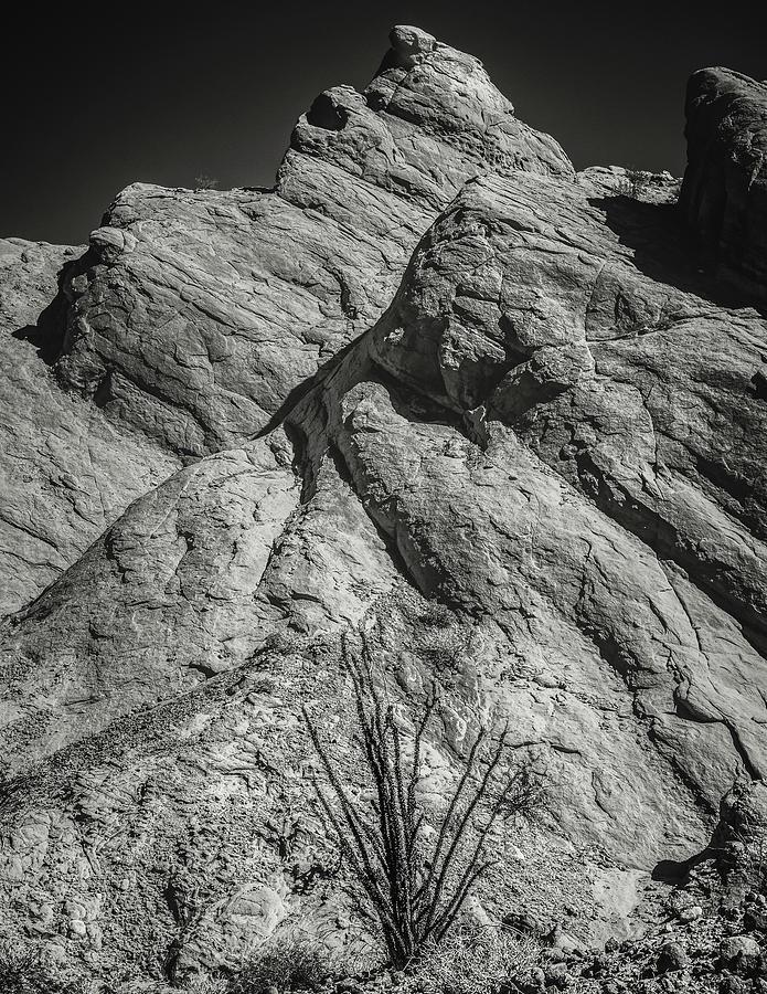 Anza-borrego Photograph - Ocotillo In Truck Haven Rocks by Joseph Smith