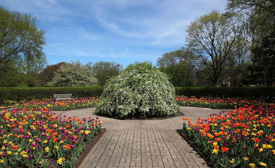 Garden Photograph - Octagon Garden At Cantigny Park by Rosanne Jordan