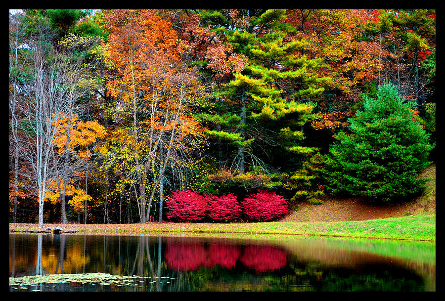 North Carolina Photograph - October Afternoon In The Blue Ridge Mountains by Susanne Still
