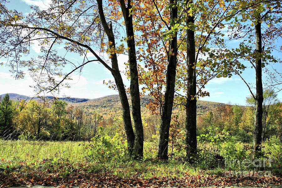 October In Vermont Photograph by Deborah Benoit