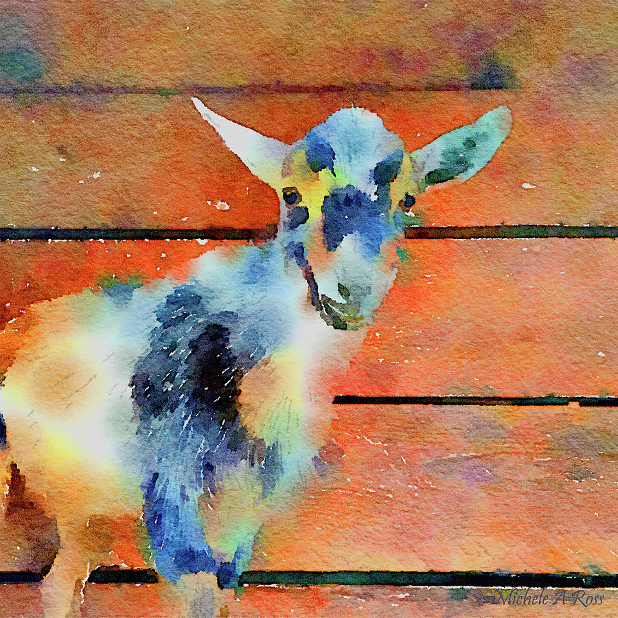 Goat Painting - October Kid by Michele Ross