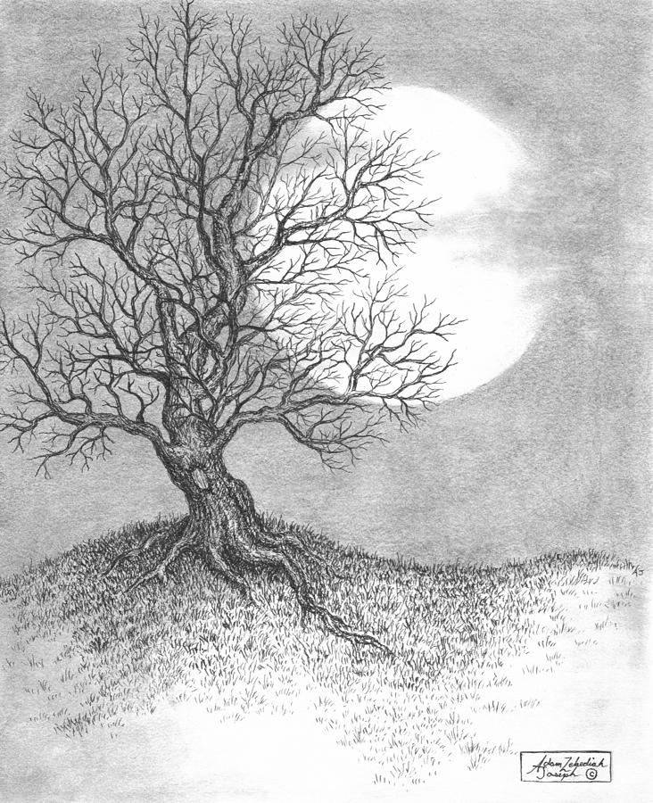 Pen And Ink Drawing - October Moon by Adam Zebediah Joseph