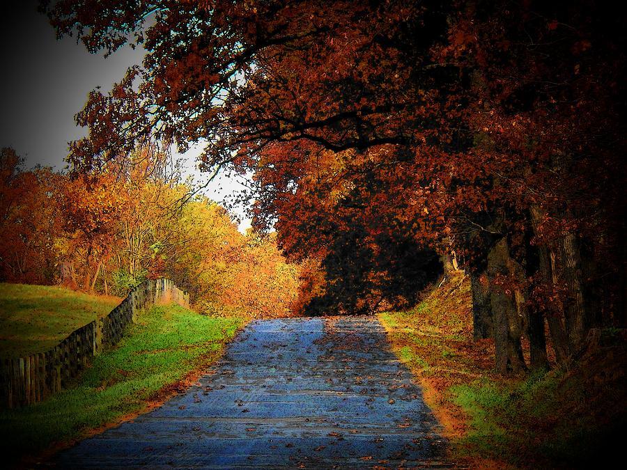 Autumn Photograph - October Road by Joyce Kimble Smith