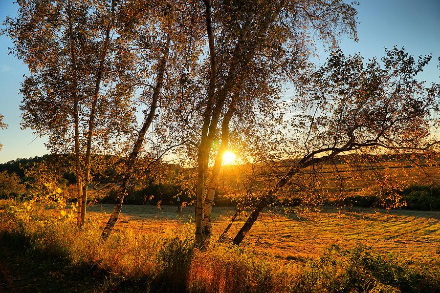October Sunset Golden Glow Photograph