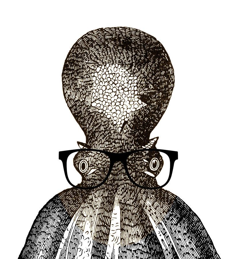 Octopus Drawing - Octopus Head by Frank Tschakert