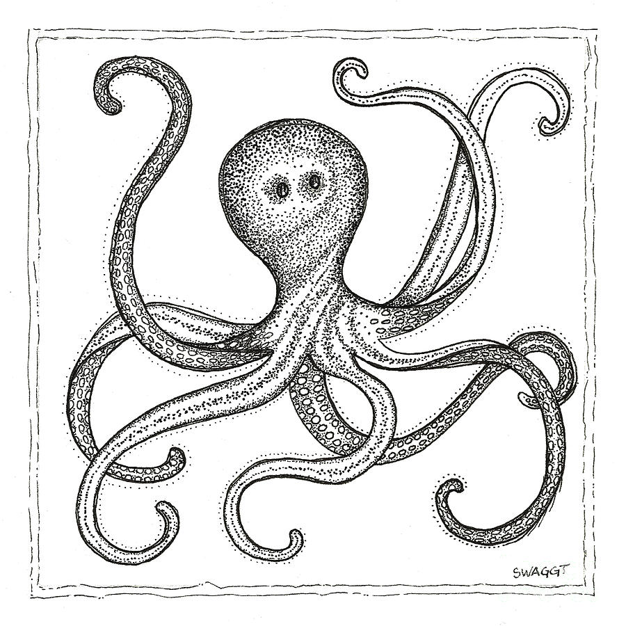 Octopus Drawing - Octopus by Stephanie Wagg