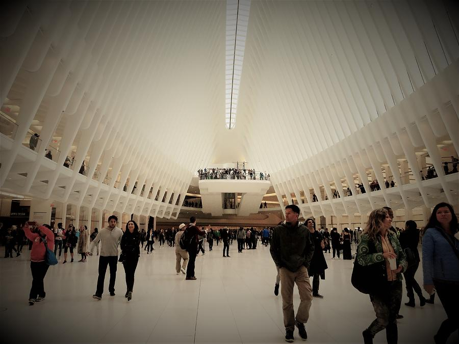 Oculus Made In New York Photograph