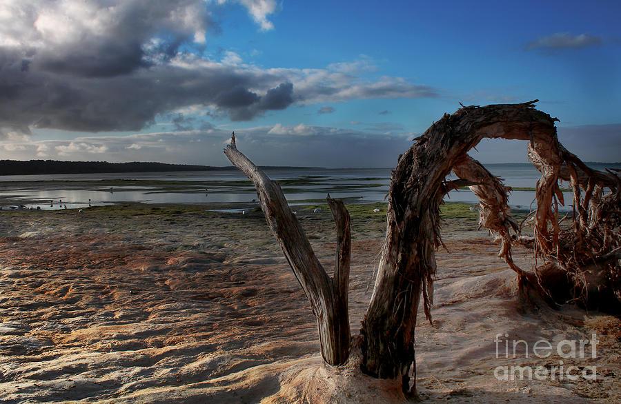 Landscape Photograph - Ode To The Estuary by Kym Clarke