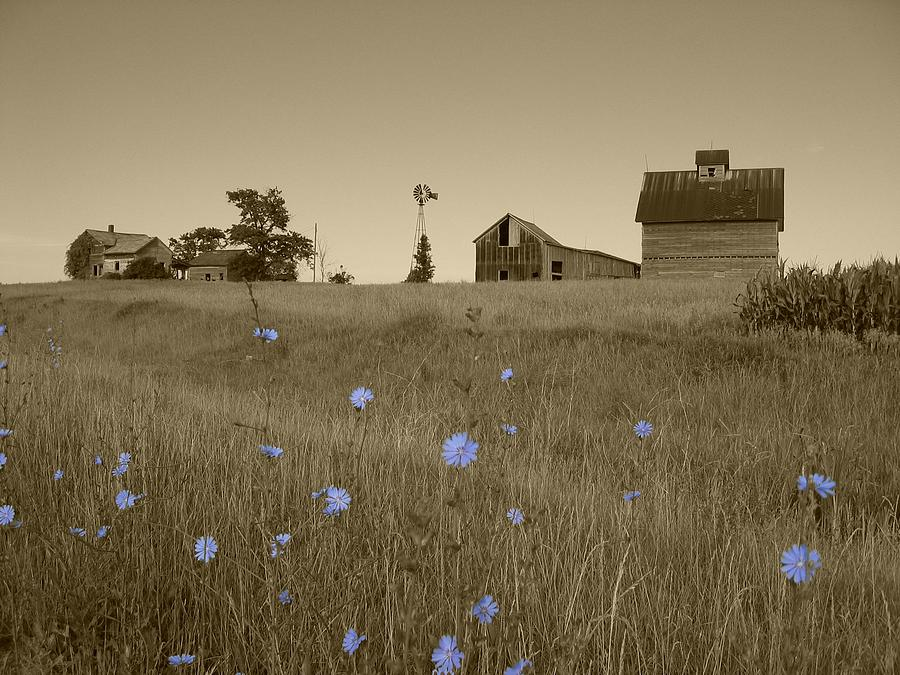 Landscape Photograph - Odell Farm V by Dylan Punke