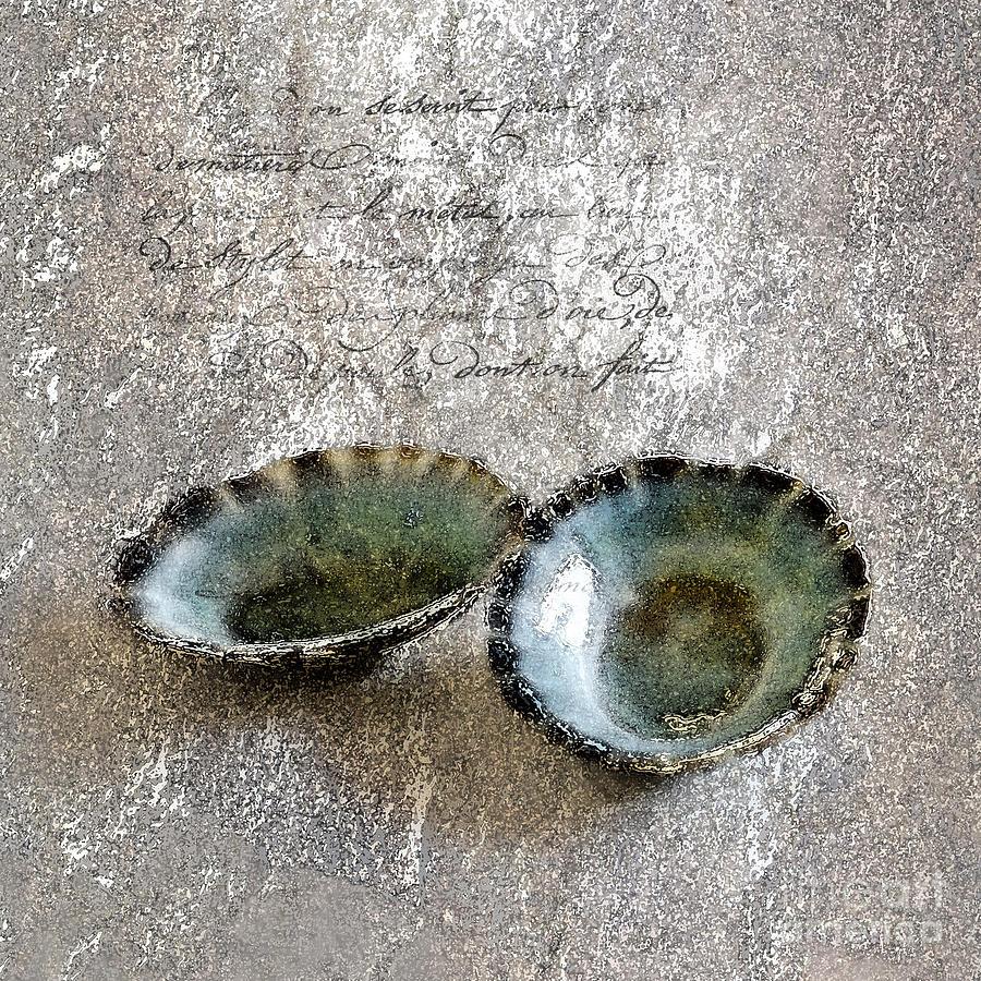 Seashells Photograph - Of The Sea 2 by Betty LaRue