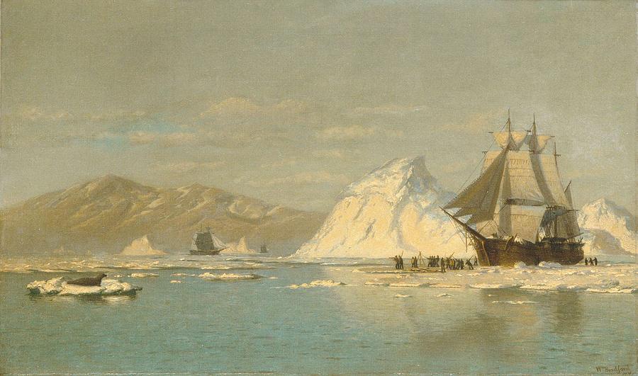 Off Greenland-whaler Seeking Open Water , William Bradford American, 1823-1892 Painting