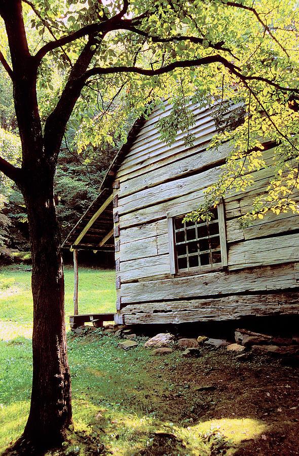 Log Cabin Photograph - Ogle Cabin by Alan Lenk