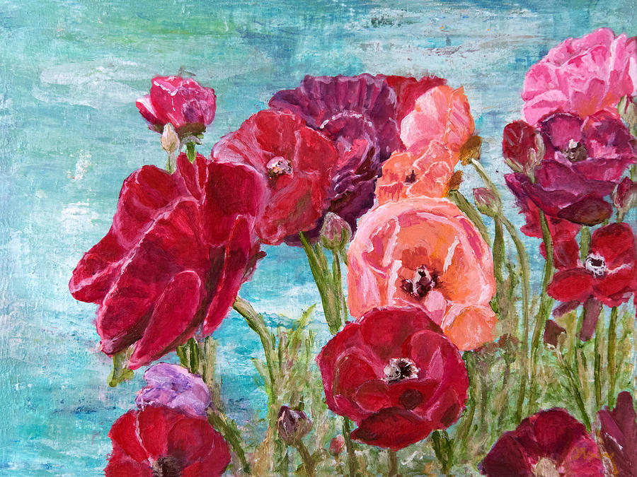 Oh, Giant Tecolote Ranunculus by Darla Nyren
