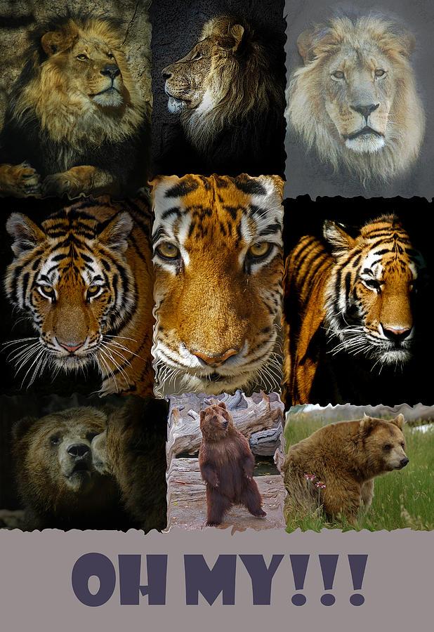 Tiger Digital Art - Oh My by Ernie Echols