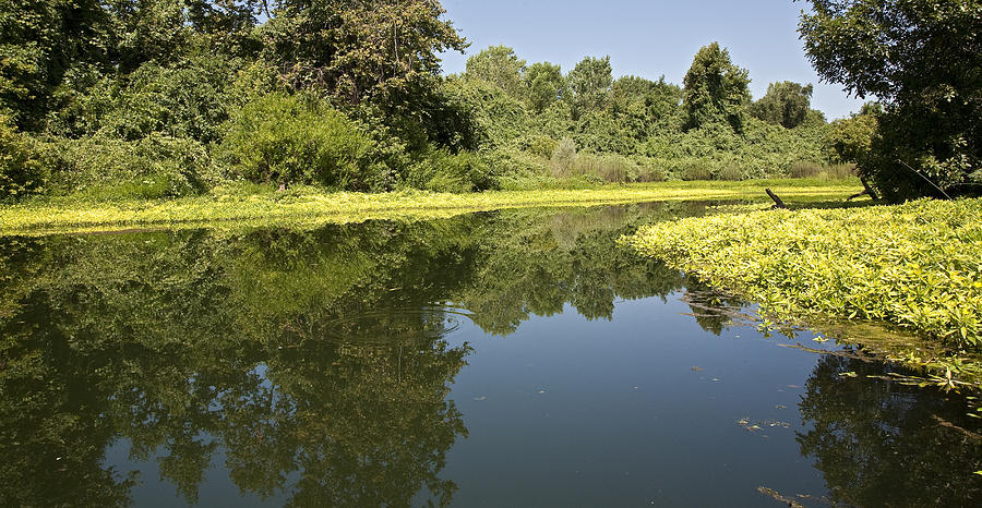 Waterscape Photograph - Oh The Calm Of It All by Charlie Osborn
