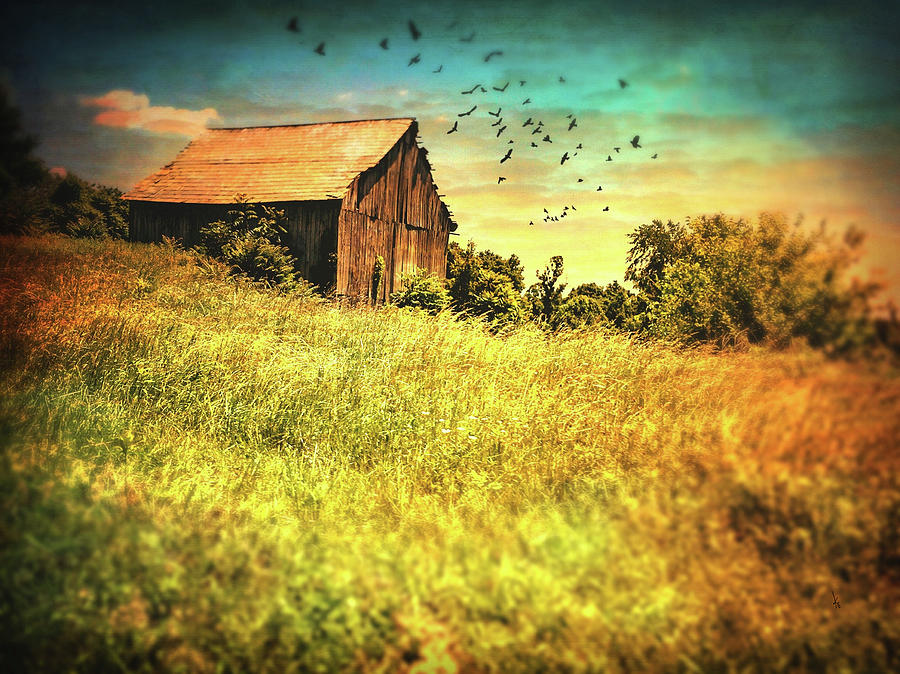 Sky Digital Art - Ohio Barn Series by Krista Droop