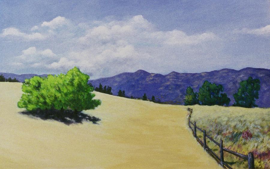 Ojai Valley by Craig Camp